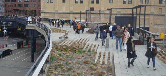Quirky Attraction: The High Line in New York City