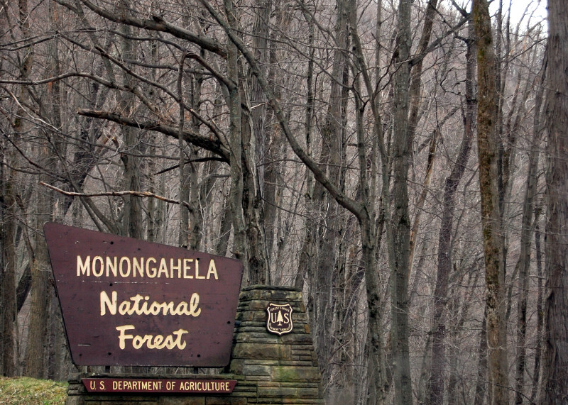 monongahela national forest - battle of cheat mountain