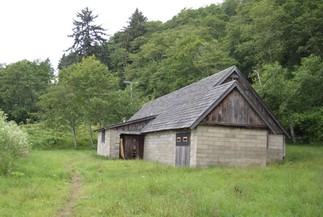 redwoods radar building