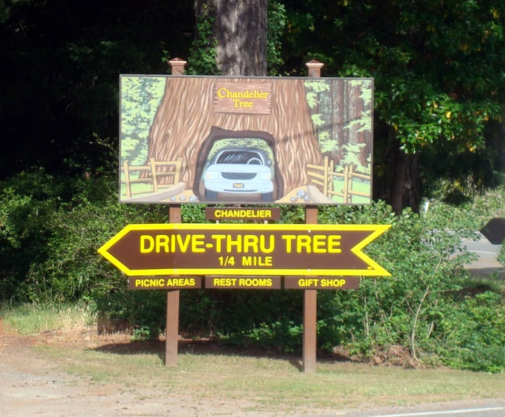 drive thru tree redwoods