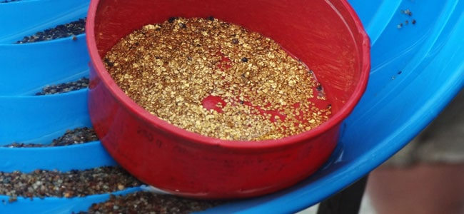 I found real gold while gold panning in the Yukon!