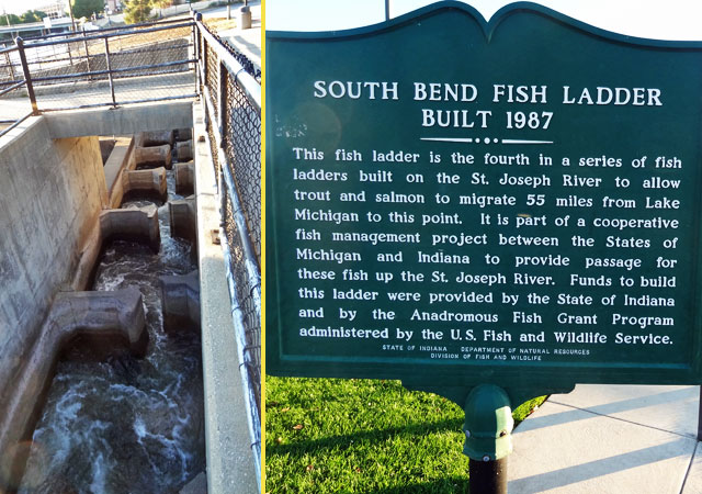 south bend fish ladder