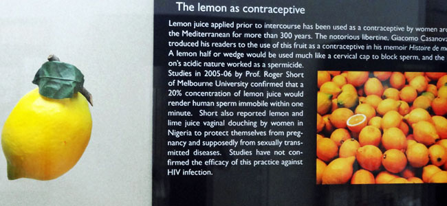 Quirky Attraction: The History of Contraception Museum