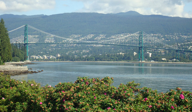 lions gate bridge vancouver suspension