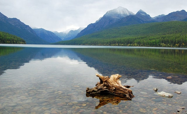 First impressions of Glacier National Park at Bowman Lake