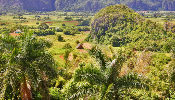 Cave Bars, Scenic Valleys, and Colorful Houses: 7 Reasons to Visit Viñales, Cuba