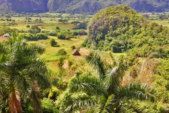 featured vinales