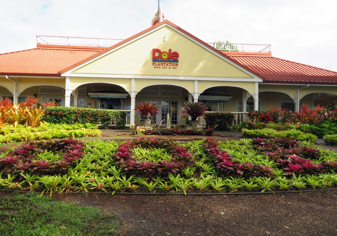 dole plantation hawaii