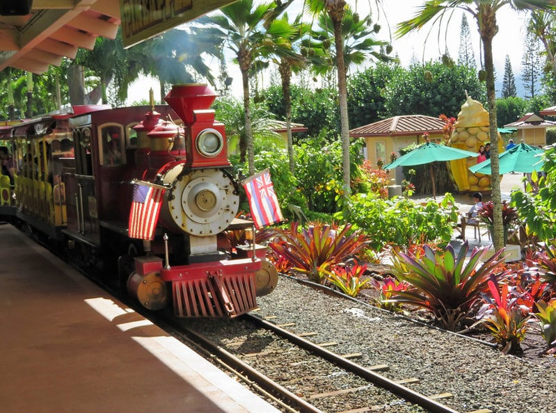dole plantation hawaii oahu - pineapple express tour