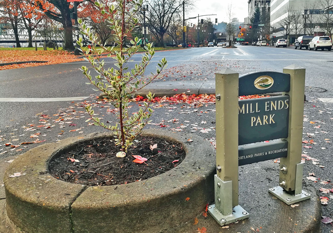 Quirky Attraction: Portland's Mill Ends Park, The Smallest Park in the World!