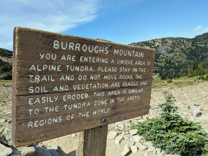 burroughs mountain